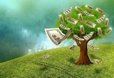 """Money Myth No. 2: """"Money Doesn't Grow On Trees"""""""